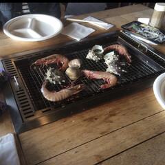 お弁当/食欲の秋/BBQ/旅行 秋になるとBBQをしたくなる季節になりま…