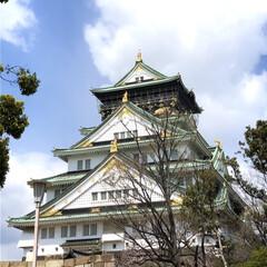 大阪観光/LIMIAおでかけ部/おでかけ/旅行/風景/春の一枚 大阪城