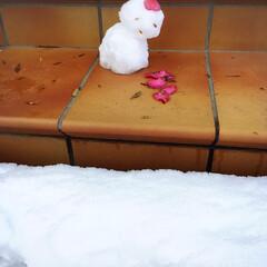 手のひらサイズ/息子作/雪/雪だるま/冬 この[雪だるま]は、雪が積もった日に息子…