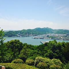 五台山/リミア/地元のオススメ/LIMIAおでかけ部/おでかけ/風景 地元のオススメの場所、高知市五台山です。…
