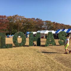 ロハスフェスタ/大阪/秋/風景/旅 ロハスフェスタに初めて行ってみました。 …