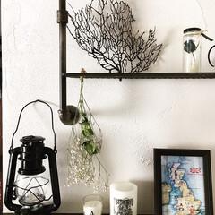 DIY/男前インテリア/わたしのおうち自慢/おうち自慢/LIMIAインテリア部/雑貨/... 漆喰の壁にDIYで取り付けたパイプウォー…