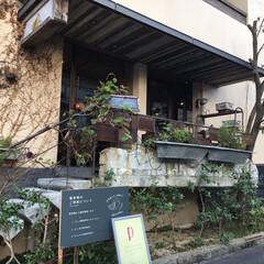 大阪/カフェランチ/カフェ/旅の思い出/秋/風景/... SNSで3年くらい仲良くしている友達2人…