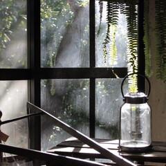 キャンドルホルダー/ランタン/フラワーベース/雑貨だいすき/ビンテージ/雑貨/... 植物と相性の良いブリキランタンガラスベー…