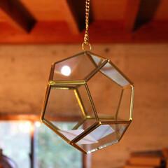 ガラスドーム/ハンギング/雑貨だいすき/インテリア/住まい ガラスのハンギングドームです。  この中…
