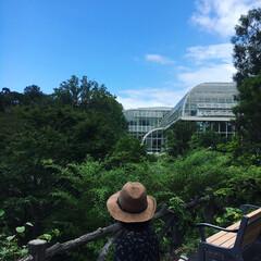 地元のオススメ/ボタニカル/五台山/牧野植物園/ジャングル/植物園/... 地元のおすすめスポット、「牧野植物園」で…