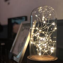 LEDライトオブジェ SPICE スパイス LEDガラスドームライト HIGH S JPDR2021 | SPICE of Life(テーブルライト)を使ったクチコミ「「LEDガラスドームライト」です。 中の…」