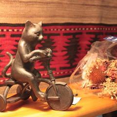 猫雑貨/雑貨だいすき/猫/雑貨/インテリア/住まい 猫の置物です。 自転車を漕いでいる猫の表…