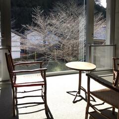 温泉/冬景色/冬/おでかけ/風景/インテリア 温泉施設の待合室です。  ここから見える…