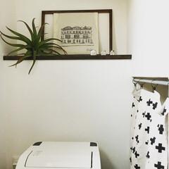 陶芸作品/アート/フェイクグリーン/インテリア/トイレ/住まい/... トイレには、大好きなイラストレーターさん…