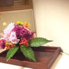 お正月 生花 飾り 華やか 可愛い.../お正月2020 お正月用に生花。花器には陶器の丸い食器を…