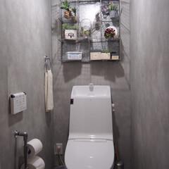 収納/インダストリアル/インテリア/トイレ/DIY/雑貨 トイレからおはようございます笑 我が家の…
