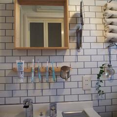 サニタリールーム/壁面収納/洗面所/DIY/100均/セリア/... セリアのアイテムで歯磨きグッズの壁面収納…