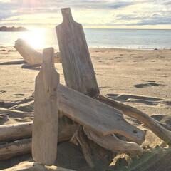 日本海/ビーチ/夏の思い出/カッティングボード/流木雑貨/流木/... いよいよ明後日東京へ戻るので今日はお土産…