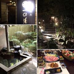 箱根/旅行/ペット/犬/グルメ/おでかけ/... お犬さまたちとの初めての旅行は箱根へ。箱…