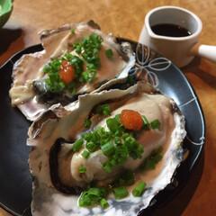 秋/グルメ/フード/旬 やって来ましたこの季節🍁 牡蠣のシーズン…