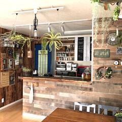 壁紙/ドアリメイク/板壁/セルフリノベーション/グリーン/DIY/... 室内でグリーンを育てるのがちょっと苦手……