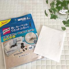 花王/ウェット拭きシート/フォロー大歓迎/住まい/掃除 布、カーペットのウェット拭きシート。これ…
