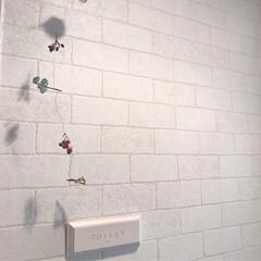レンガ柄壁紙/あけおめ/フォロー大歓迎/DIY/おうち このレンガ柄壁紙はトイレ前に使っています…