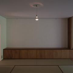 和室/漆喰/紙/紙クロス/クロス/畳/... 和室の壁は砂漆喰仕上げ、天井は紙クロス、…