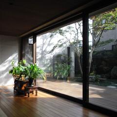 テラス/建具/サッシ/デッキ/木製サッシ/防音/... もみじの家のリビングダイニングとテラスは…