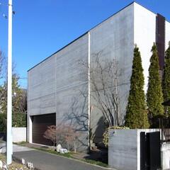 エントランス/塀/歩道/植栽/入り口/入口/... この付近は敷地境界に塀を建てている家が多…