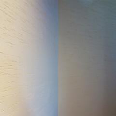 漆喰/壁/仕上げ/インテリア/左官 ripple house 漆喰仕上げ  …