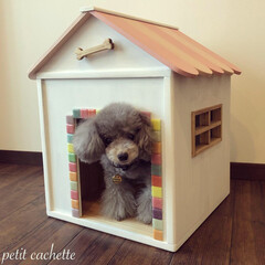 ドッグハウス/リメイク/犬小屋/おすすめアイテム/フォロー大歓迎/わんこ同好会/... ✢︎BOXのリメイク 〜室内用dog h…