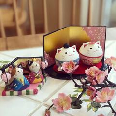 ひな祭り/おひなさま/お雛様/猫/にゃんこ同好会/雑貨/... ❃︎可愛い猫のお雛様❃︎ タイプはちがい…