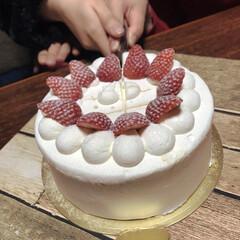 """cake入刀/グルメ/フード/スイーツ 昨日は娘のお誕生日 そして、娘のお友達""""…"""