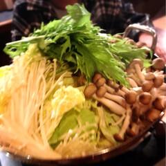 鶏鍋/グルメ/フード 今夜の夕飯です^ ^  久しぶりに外食^…(1枚目)