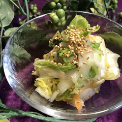 漬物/白菜/グルメ/フード/おうちごはん 白菜が美味しい季節ですよ^ ^  さっと…