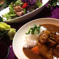 野菜サラダ/カレーライス/わたしのごはん/グルメ/フード 今夜の夕飯です^ ^  昨日、カレーが食…