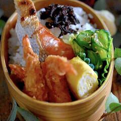エビフライ/紅鮭/お弁当/フォロー大歓迎 おはようございます😊  今朝は3度スター…