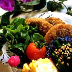 メンチカツ/ミンチカツ/わたしのごはん/グルメ/フード 今日のお弁当です^ ^  お弁当はミンチ…