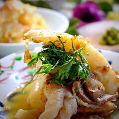 献立/揚げシュウマイ/水菜サラダ/オデン/フォロー大歓迎 今夜の夕飯です^ ^  食べたい食べたい…