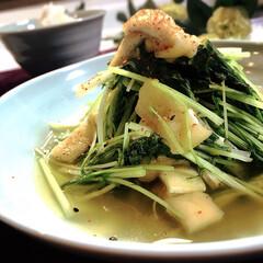 レシピ/水菜/グルメ/フード/おうちごはん 水菜の美味しい季節です^ ^  只今レシ…