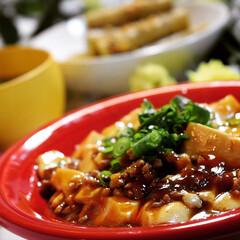 麻婆豆腐/LIMIAごはんクラブ/おうちごはんクラブ 今夜の夕飯です  久しぶりに大ぶりな雨で…