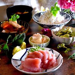 献立/夕飯/ガブの酢の物/シラス丼/お味噌汁/空豆/... こんばんは^ ^  今日は朝から肌寒く、…(1枚目)