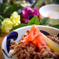 モロヘイヤと山芋の和え物/牛丼/フォロー大歓迎/LIMIAごはんクラブ/おうちごはんクラブ 今夜の夕飯です^ ^  有ると思っていた…