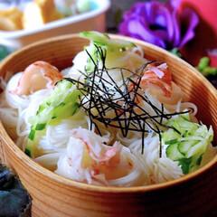 生姜の佃煮/玉子焼き/素麺/お弁当/フォロー大歓迎/LIMIAファンクラブ/... 今日のお弁当です。  連日の暑さが身体に…