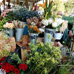 秋/おでかけ/クラフトマーケット 最後の写真は、大きな生姜です❗(1枚目)