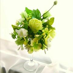 紫陽花/ワンコイン/グリーン/造花/アレンジ ワイングラスアレンジ ワンコイン