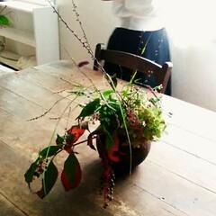 原宿/生花/おでかけ/高田かえさんの花器/ゆうがおさんお弁当 大好きな花生けの先生のレッスン(お弁当付…