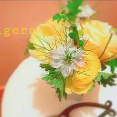 切り花 ニゲラと黄色い花