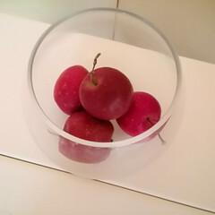 ドライフラワー/姫りんご/リメ缶/100均/ハンドメイド リメ缶を作って試作してみました。(2枚目)