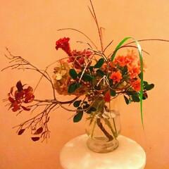 菊/アレンジ/生花 秋の花です
