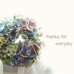 秋色紫陽花/リース/生花 皆様、いつもありがとうございます。元気を…