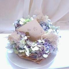 お皿に置く置き型リース/カード/生花/リース/スモークツリー/紫陽花/... 色のぬけてきたころの紫陽花とスモークツリ…