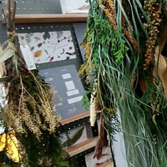 秋/おでかけ/クラフトマーケット 最後の写真は、大きな生姜です❗(4枚目)